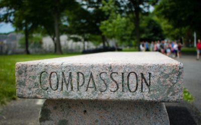 Entrenamos la compasión
