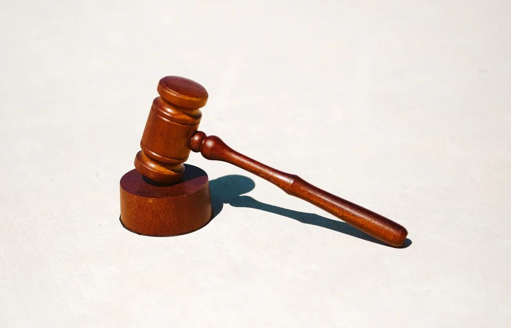 Primera sentencia del Tribunal Europeo de Derechos Humanos sobre víctimas de trata para criminalidad forzada